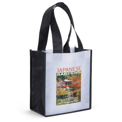 Degas PET Non-Woven Tote Bag (ColorVista)
