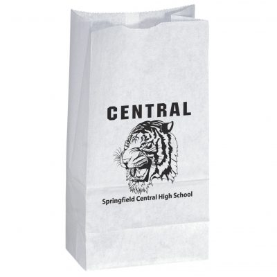 Popcorn Speciality Bag (Flexo Ink)